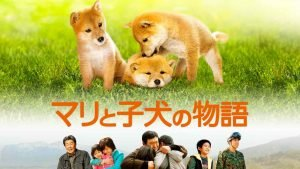 banner of shiba inu puppy in Japan