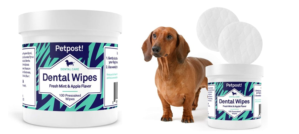 Petpost-Dental-Wipes-for-Dogs